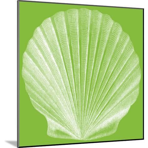 Saturated Shells II-Vision Studio-Mounted Art Print
