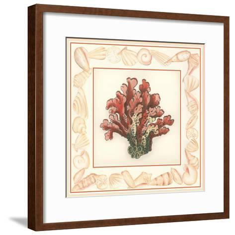 Coral with Shell Border IV-Vision Studio-Framed Art Print
