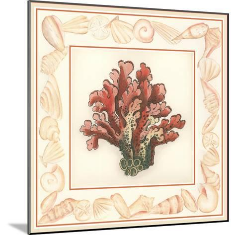 Coral with Shell Border IV-Vision Studio-Mounted Art Print