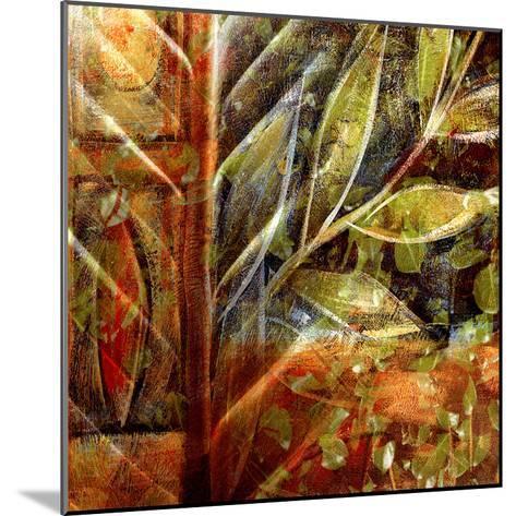 Fillmore II-Danielle Harrington-Mounted Art Print