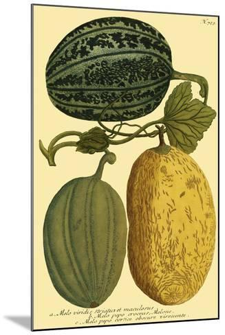 Antique Melons I--Mounted Art Print