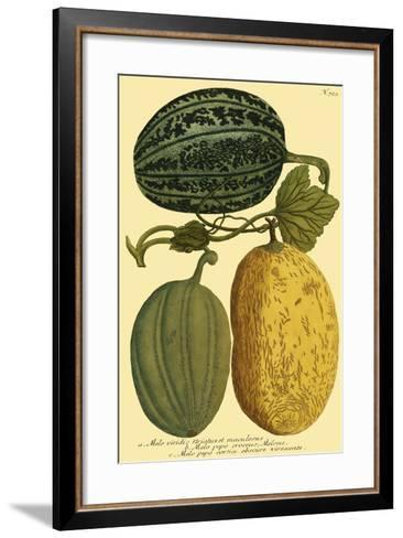 Antique Melons I--Framed Art Print