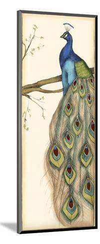 Small Rebecca's Peacock II-Jennifer Goldberger-Mounted Art Print