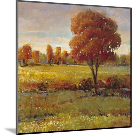 Field in Fall-Tim O'toole-Mounted Art Print
