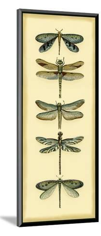 Small Dragonfly Collector I-Chariklia Zarris-Mounted Art Print