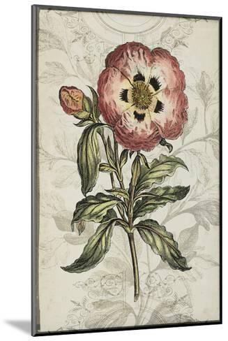 Keepsake Floral II-Jennifer Goldberger-Mounted Art Print