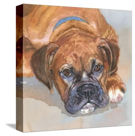 Baillie Boxer-Edie Fagan-Stretched Canvas Print