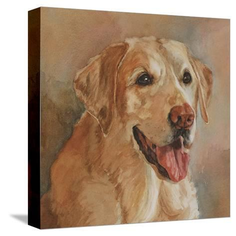 Calie Yellow Lab-Edie Fagan-Stretched Canvas Print