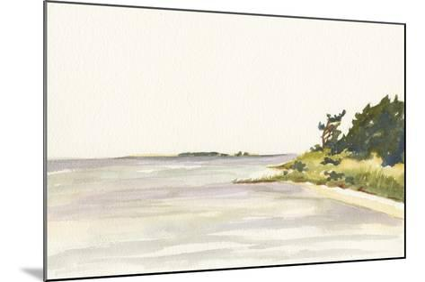Solitary Coastline I-Dianne Miller-Mounted Art Print