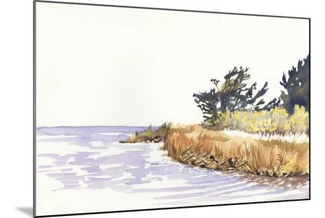 Solitary Coastline III-Dianne Miller-Mounted Art Print