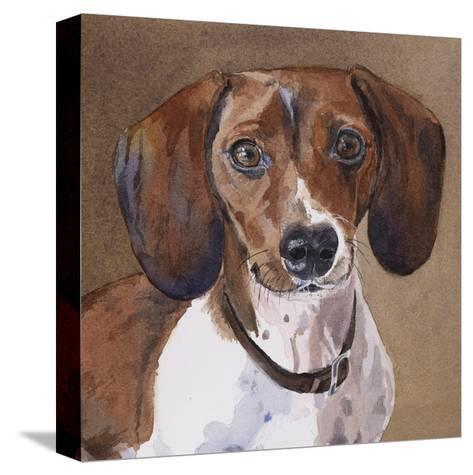 Sam Dachshund-Edie Fagan-Stretched Canvas Print