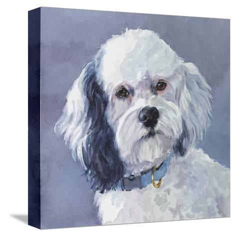Woofie Cockapoo-Edie Fagan-Stretched Canvas Print