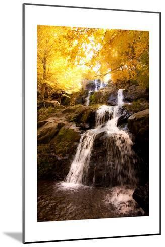 Waterfall in Autumn-Lantern Press-Mounted Art Print
