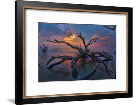 Driftwood and Sunset-Lantern Press-Framed Art Print