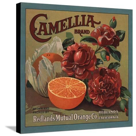 Camelia Brand - Redlands, California - Citrus Crate Label-Lantern Press-Stretched Canvas Print