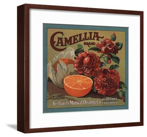 Camelia Brand - Redlands, California - Citrus Crate Label-Lantern Press-Framed Art Print