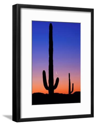 Cactus and Moon-Lantern Press-Framed Art Print