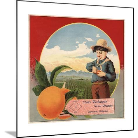 Boy in Orchard - Claremont, California - Citrus Crate Label-Lantern Press-Mounted Art Print