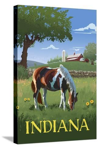 Indiana - Horse in Field-Lantern Press-Stretched Canvas Print