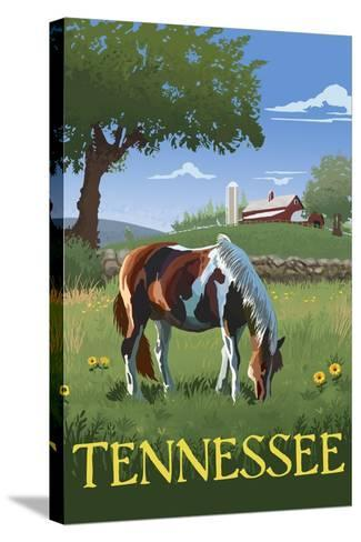 Tennsesse - Horse in Field-Lantern Press-Stretched Canvas Print