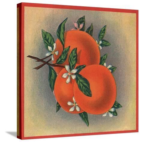 Orange Branch - Citrus Crate Label-Lantern Press-Stretched Canvas Print
