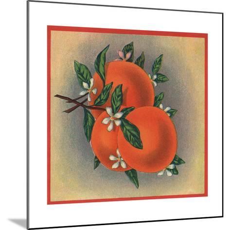 Orange Branch - Citrus Crate Label-Lantern Press-Mounted Art Print