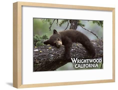 Wrightwood, California - Black Bear in Tree-Lantern Press-Framed Art Print