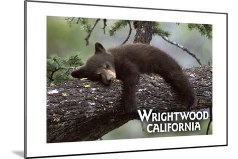 Wrightwood, California - Black Bear in Tree-Lantern Press-Mounted Art Print