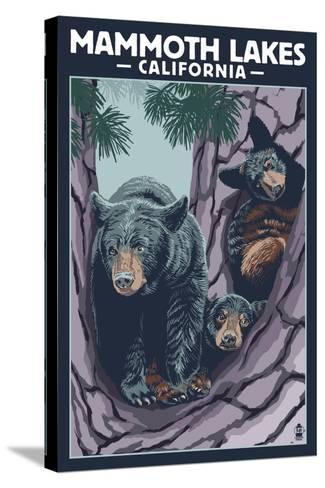 Mammoth Mountain, California - Black Bear and Cubs in Tree-Lantern Press-Stretched Canvas Print