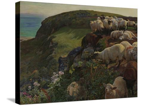 Our English Coasts, 1852 ('Strayed Sheep')-William Holman Hunt-Stretched Canvas Print