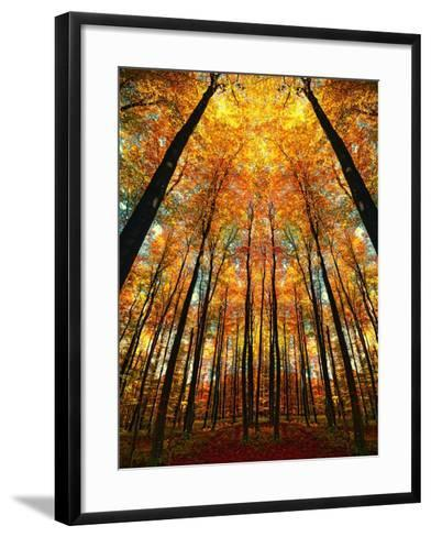 Cathedral Fall-Philippe Sainte-Laudy-Framed Art Print