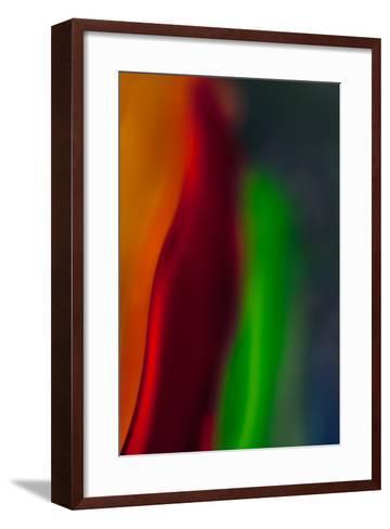 Diva-Ursula Abresch-Framed Art Print