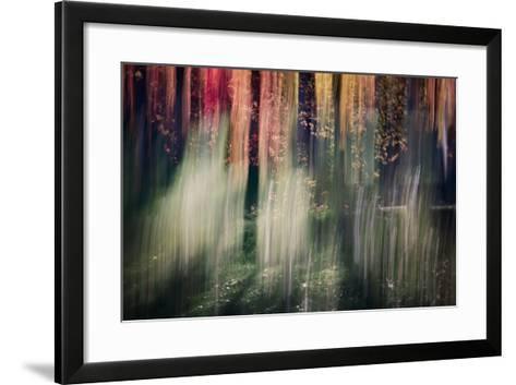 Spring Light-Ursula Abresch-Framed Art Print