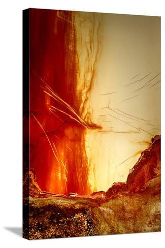 Courtain Call-Ursula Abresch-Stretched Canvas Print