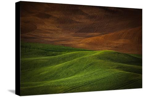 Landwriting 1-Ursula Abresch-Stretched Canvas Print