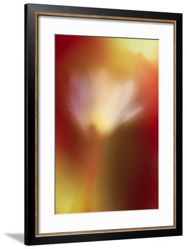 Flower Abstract-Ursula Abresch-Framed Art Print