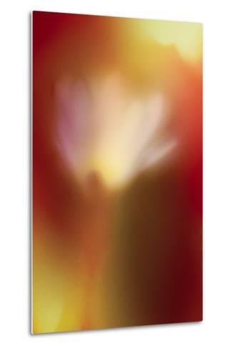 Flower Abstract-Ursula Abresch-Metal Print
