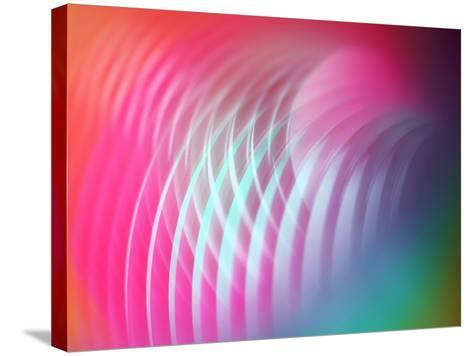 Slinky-Heidi Westum-Stretched Canvas Print