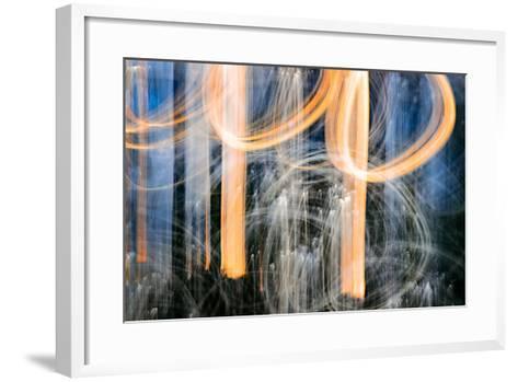 Sunset Trees-Ursula Abresch-Framed Art Print