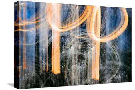 Sunset Trees-Ursula Abresch-Stretched Canvas Print