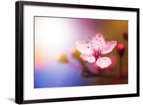 Spring Light-Philippe Sainte-Laudy-Framed Art Print