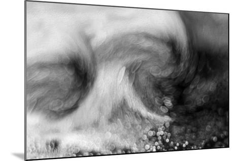 Autumn Storm-Heidi Westum-Mounted Photographic Print