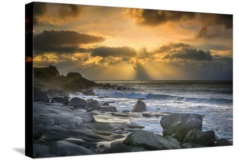Lofoten Beach and Stones-Marco Carmassi-Stretched Canvas Print
