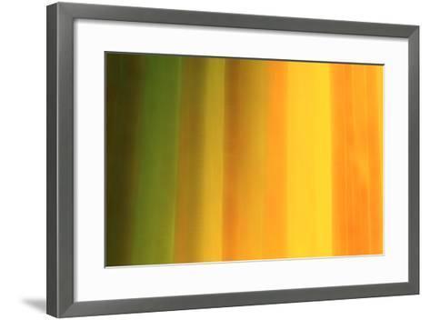 Warm Tonality-Marco Carmassi-Framed Art Print