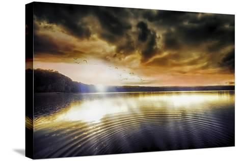 Divine Light-Viviane Fedieu Daniel-Stretched Canvas Print