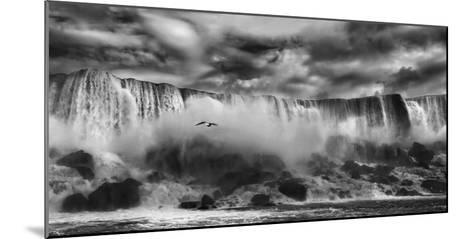 Beauty Unbound!!-Yvette Depaepe-Mounted Photographic Print