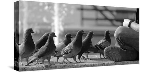 On Line for Food-Jian Wang-Stretched Canvas Print