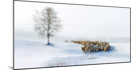 In Snow-Hua Zhu-Mounted Photographic Print