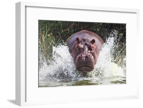 I'm Going to Get You!!-Wayne Pearson-Framed Art Print