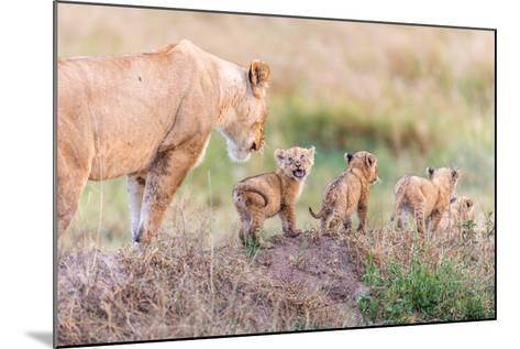 Let's Go Mom-Ted Taylor-Mounted Photographic Print
